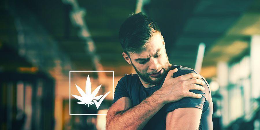 Le Cannabis : Un Médicament Légitime Et Efficace