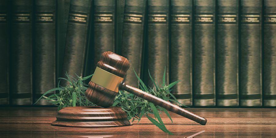 Acapulco Gold : Comment L'immigration Mexicaine A Conduit À La Prohibition Du Cannabis
