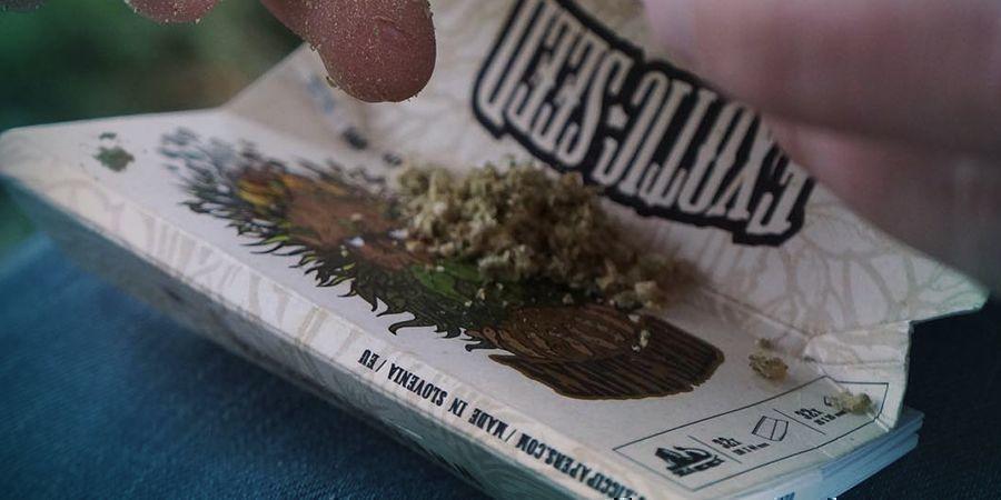 Exotic Seed : Une Entreprise Orientée Vers La Communauté