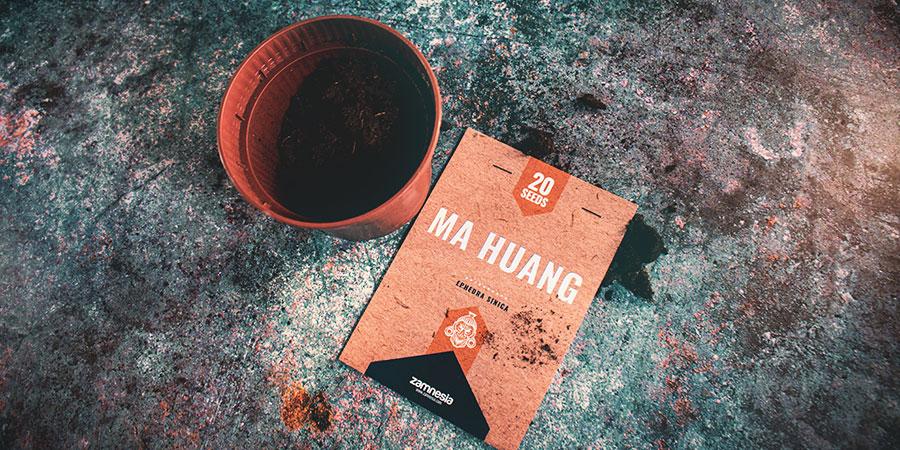 Ma Huang