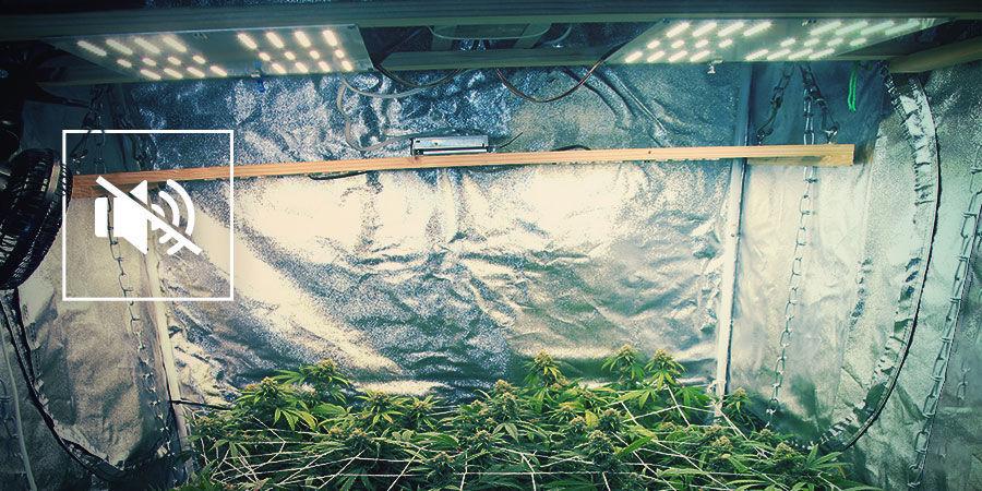 Minimisez Le Bruit De Votre Espace De Culture Du Cannabis