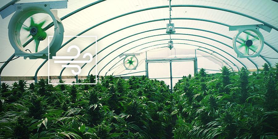 Votre Espace De Culture Du Cannabis : VENTILATION