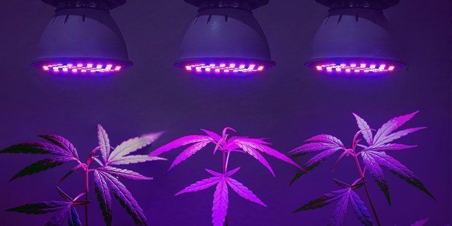 Trouver La Solution d'Éclairage La Plus Efficace