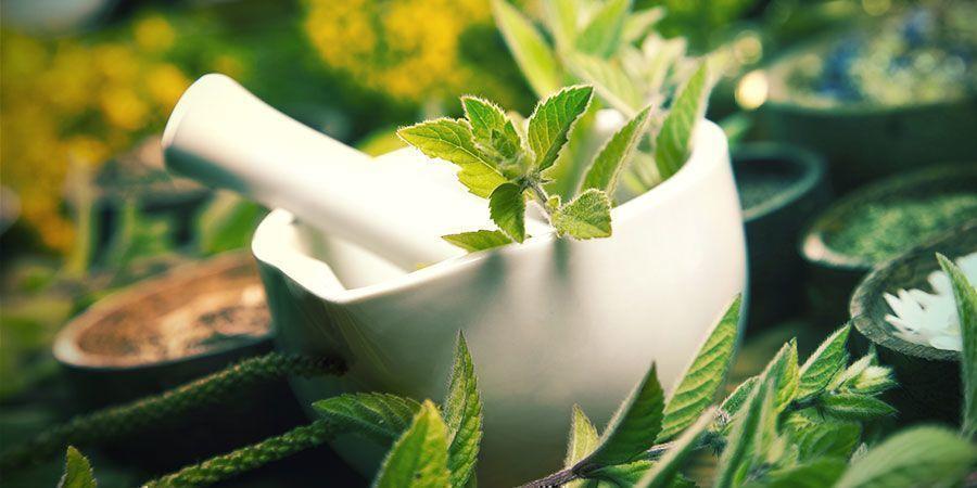 Jus De Plante Fermenté (JPF) Engrais Cannabis