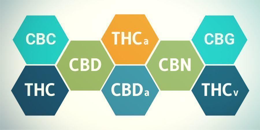 Qu'en Est-il Des Autres Cannabinoïdes Que Le THC ?