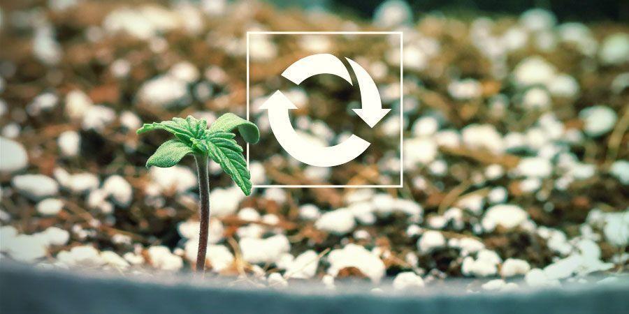 Réutilisables - Cultiver Du Cannabis