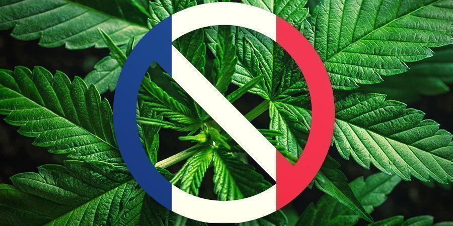 L'Histoire De La France Avec Le Cannabis