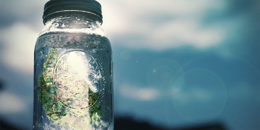 Préparer Du Sel Au Cannabis : Instructions Étape Par Étape