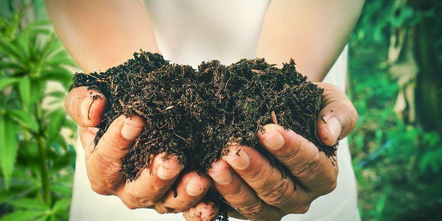 Comment Faire Son Propre Compost Pour Le Cannabis