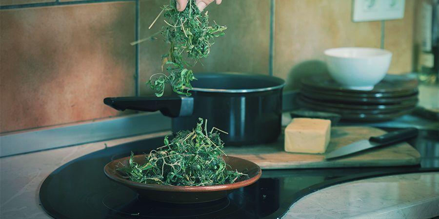 Comestibles Concentrés De Cannabis : Plus Facile d'Emploi