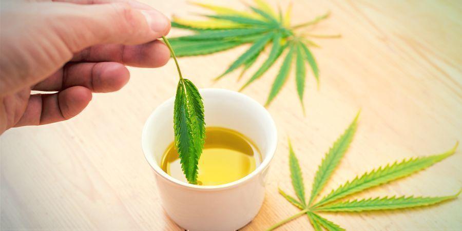 Comestibles Concentrés De Cannabis : Infusez Dans Une Matière Grasse De Votre Choix