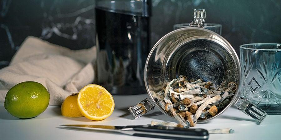 Comment Préparer Un Lemon Tek Avec Des Champignons Ou Truffes Magiques