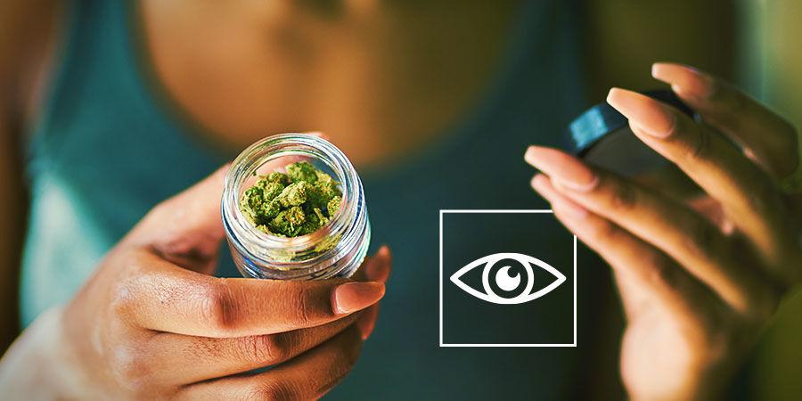 Détecter Les Contaminants Dans Le Cannabis : Inspectez Votre Cannabis Visuellement