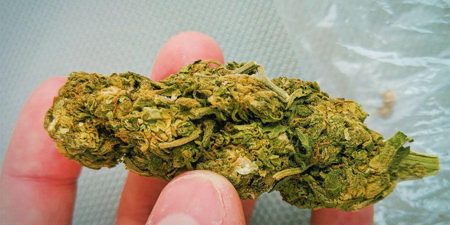 Types De Contaminants Dans Le Cannabis : Sable