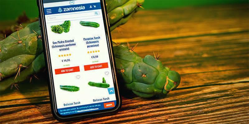 Où Acheter Echinopsis Zamnesiana