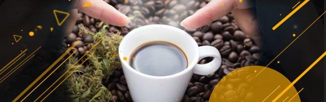 Prendre Un Café Et Se Mettre Au Travail