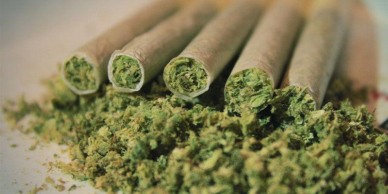 Que Se Passe-T-Il Lorsque Vous Fumez Ou Mangez Trop De cannabis ?