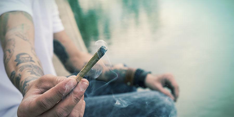 Le Cannabis Peut Agir Comme Un Outil Pour Réduire Les Risques