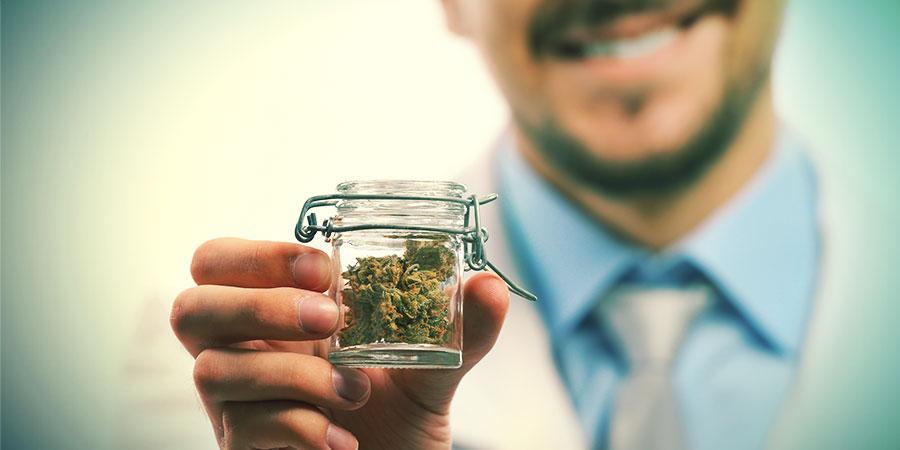 Cannabis : Une Vue D'ensemble