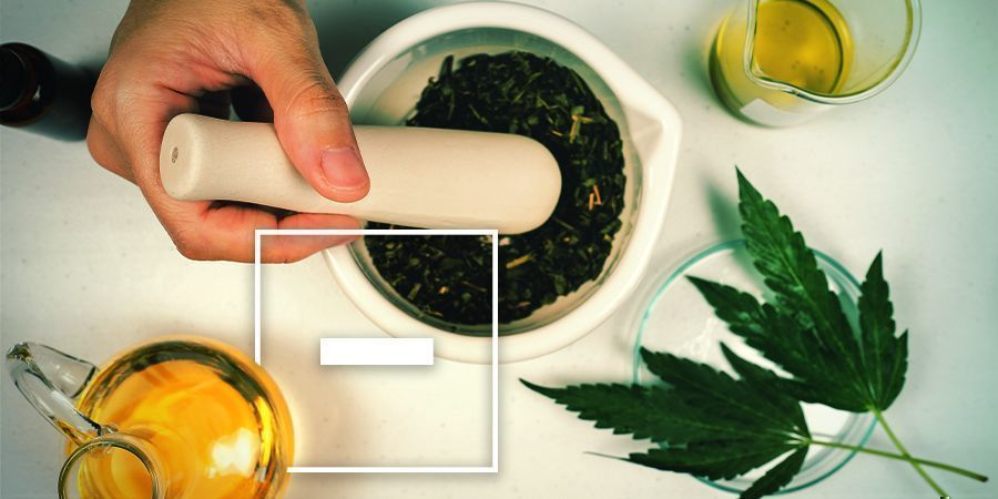 Inconvénients De L'huile D'olive Au Cannabis