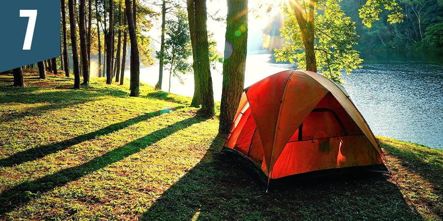 Partez camper dans la forêt