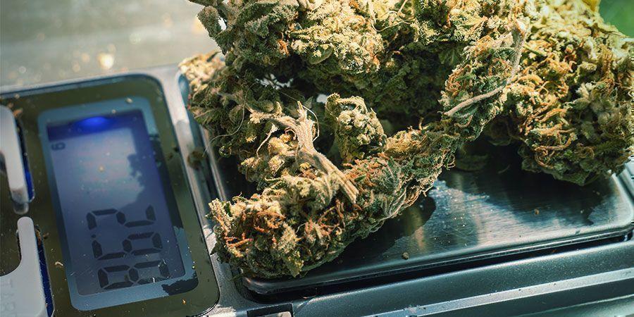 Soulager La Tension Avec Le Cannabis : Essayez Différents Dosages