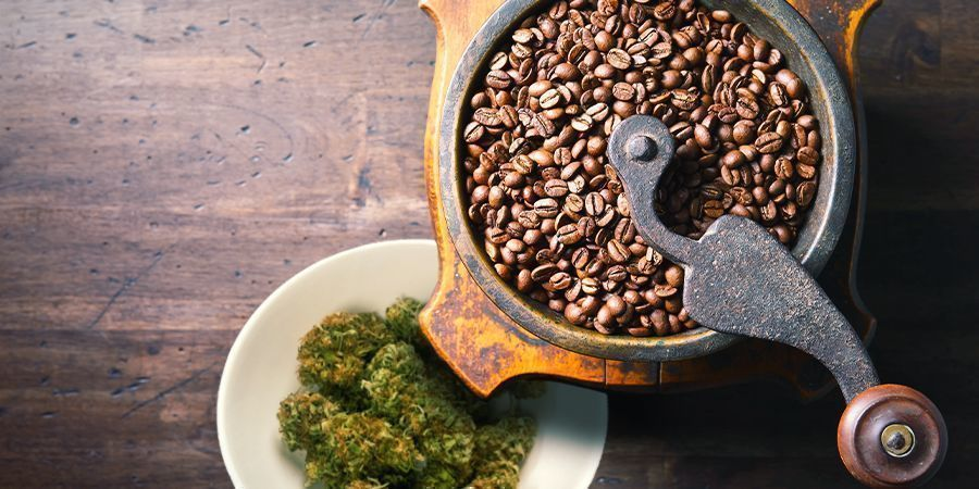 UTILISER UN MOULIN À CAFÉ POUR PRÉPARER UN CANNA-CAFÉ