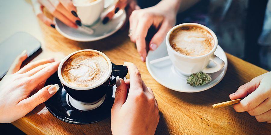 LES EFFETS DU CANNABIS ET DU CAFÉ DIFFÉRERONT D'UNE PERSONNE À L'AUTRE