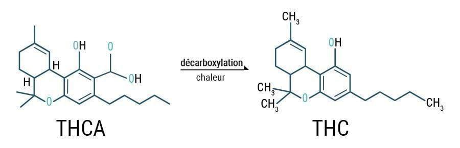 Décarboxylation THCA & THC