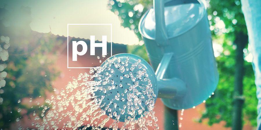Problèmes Liés Aux Niveaux De pH