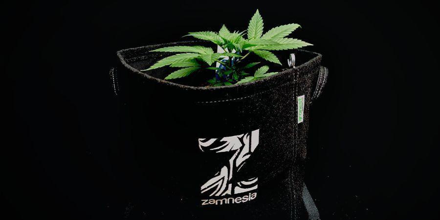Utiliser Des Pots En Tissu