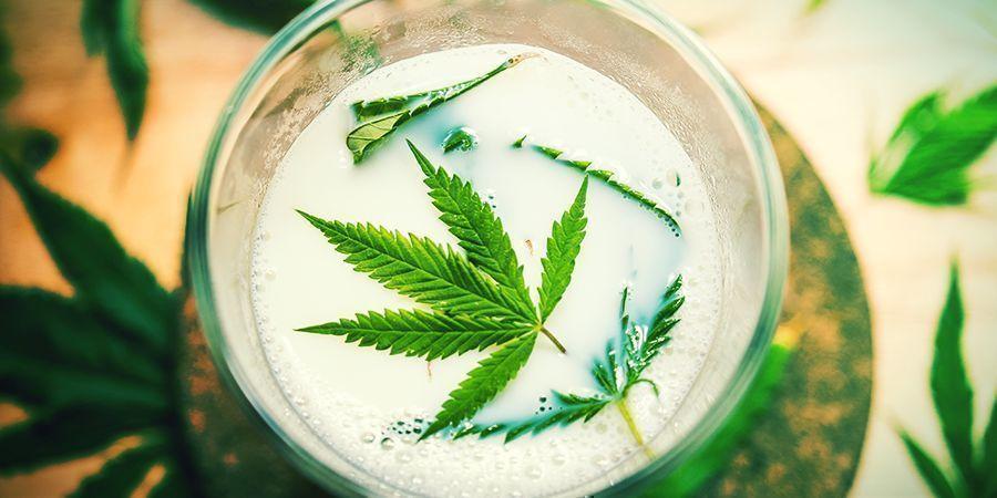 Autres Ingrédients Naturels (Lait, Poivre De Cayenne, Cannelle) - pulvériser vos plants de cannabis