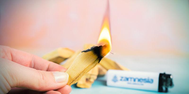 Comment Brûler Des Bâtonnets De Palo Santo