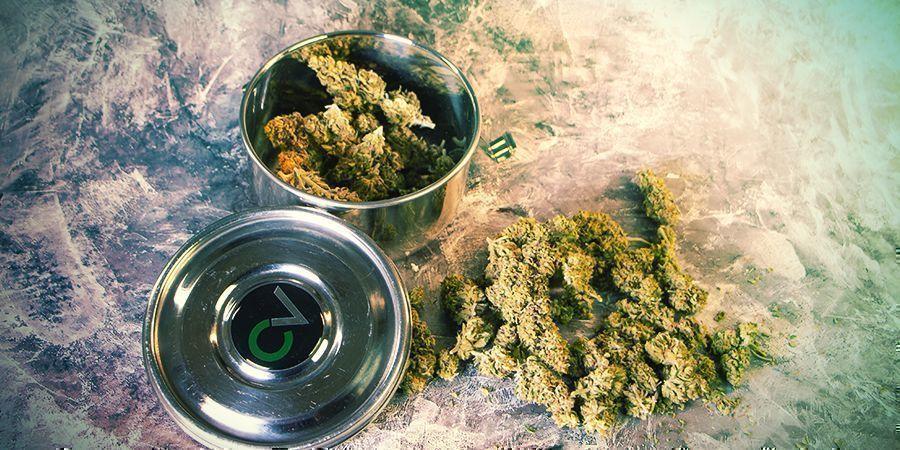 Stockage Cannabis Cvault