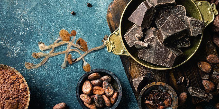 Chocolat Aux Champignons Magiques