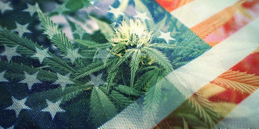 LA GUERRE CONTRE LES DROGUES : UN ÉCHEC COMPLET ?