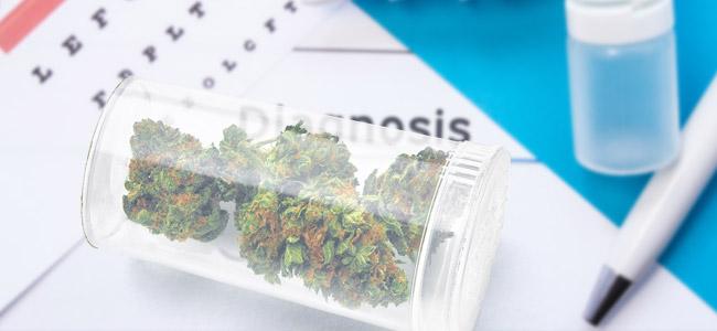 L'accès Au Cannabis Médical