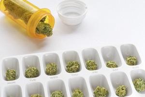 Marihuana prescription