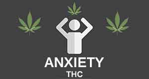 THC and Anxiety