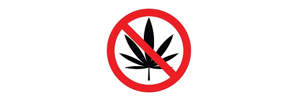 Cannabis prohibition