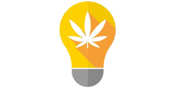 lampes cannabis