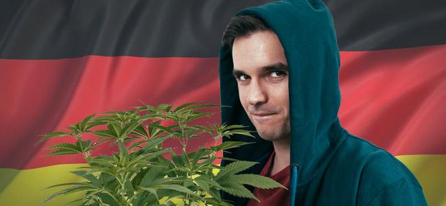 Cultiver Cannabis Allemange