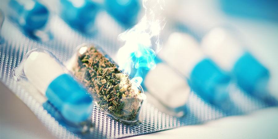 Le Cannabis Peut-il Être L'Antidouleur Du Futur?