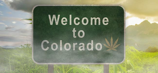 Colorado Cannabis