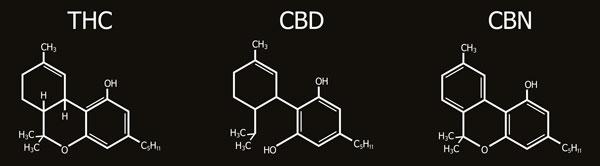THC CBD CBN