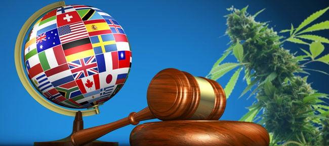 La légalisation mondiale du cannabis