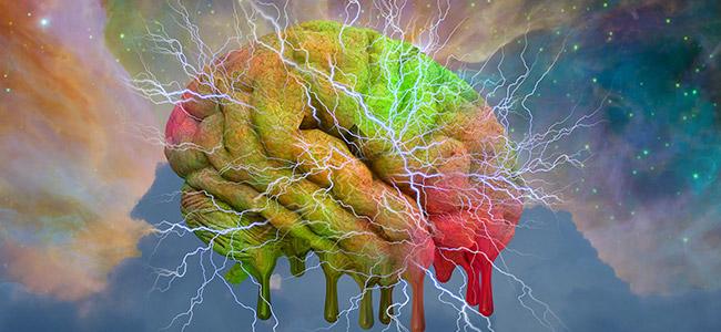 LSD et le cerveau
