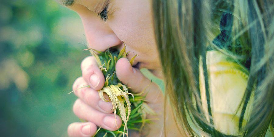 Raisons D'Arrêter Le Tabac: Votre Odorat Et Votre Goût