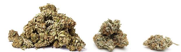 réduire la consommation de cannabis