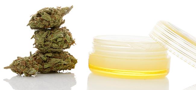 Tiges de cannabis crème
